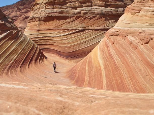 """""""The Wave"""" Coyote Buttes, Utah"""