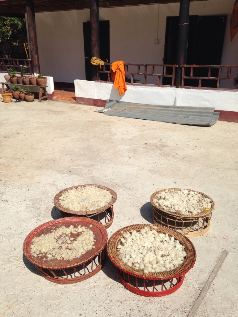 Sticky rice drying in the sun